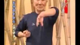 Ip Chun Siu lim tao