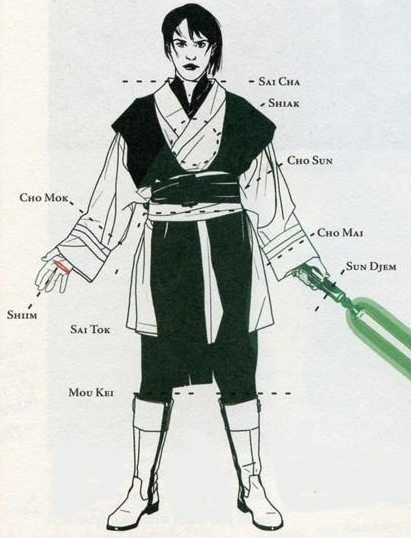 Lightsaber Combat Training - the way of the Warrior - Forum